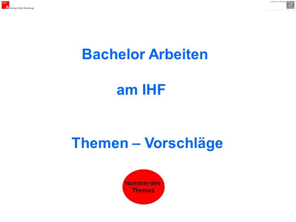 Bachelor Arbeiten am IHF Themen – Vorschläge