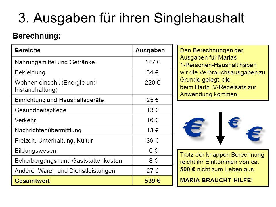 3. Ausgaben für ihren Singlehaushalt