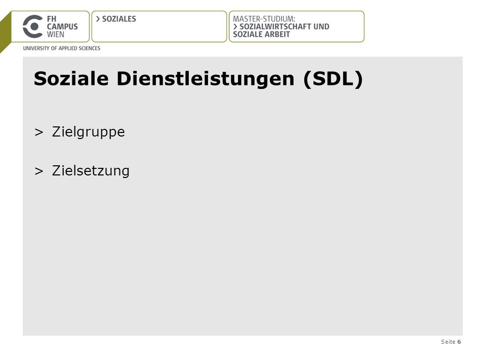 Soziale Dienstleistungen (SDL)