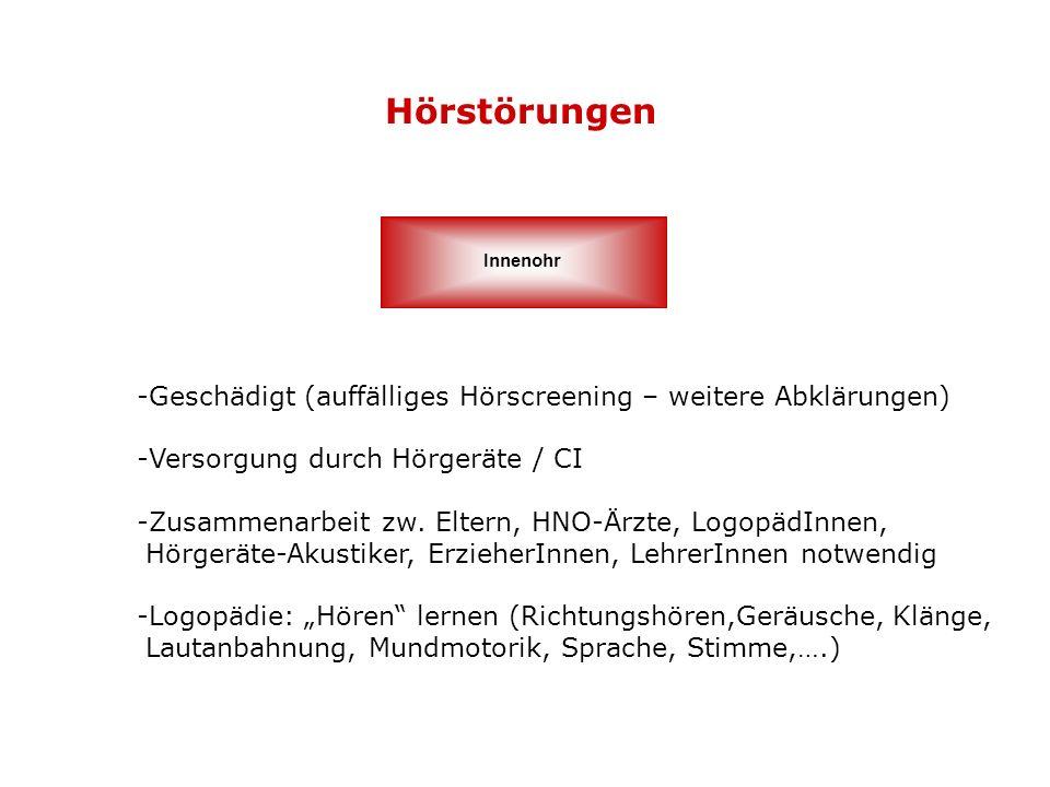 Hörstörungen Innenohr. Geschädigt (auffälliges Hörscreening – weitere Abklärungen) Versorgung durch Hörgeräte / CI.