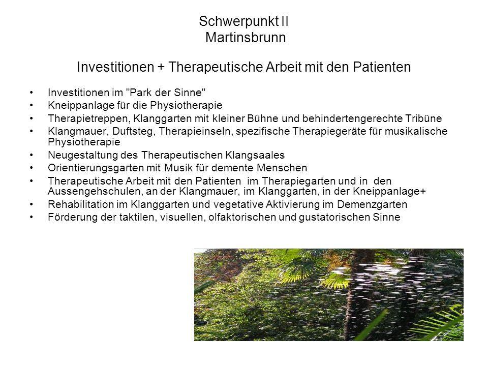 Schwerpunkt II Martinsbrunn Investitionen + Therapeutische Arbeit mit den Patienten