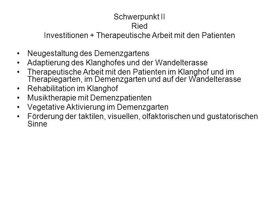 Schwerpunkt II Ried Investitionen + Therapeutische Arbeit mit den Patienten