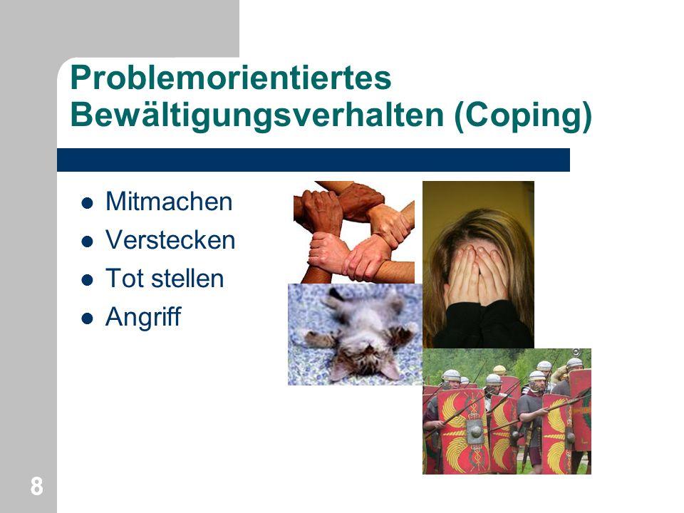 Problemorientiertes Bewältigungsverhalten (Coping)