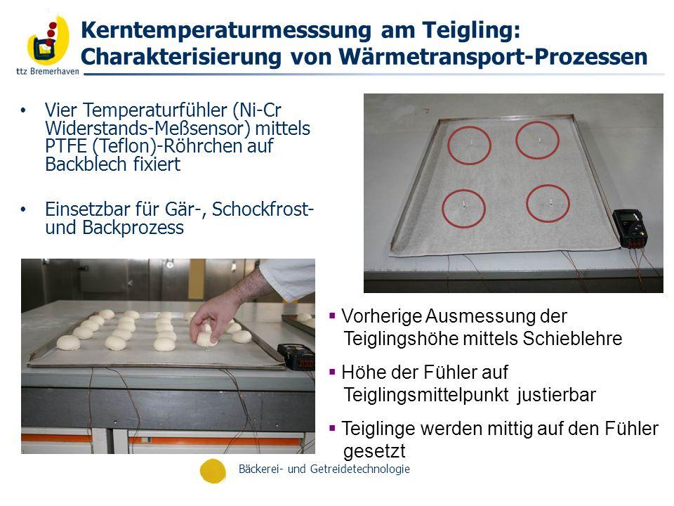 Kerntemperaturmesssung am Teigling: Charakterisierung von Wärmetransport-Prozessen