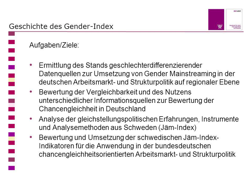 Geschichte des Gender-Index