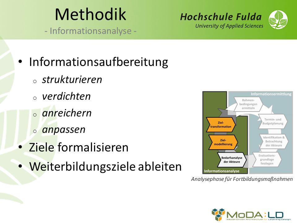 Methodik - Informationsanalyse -