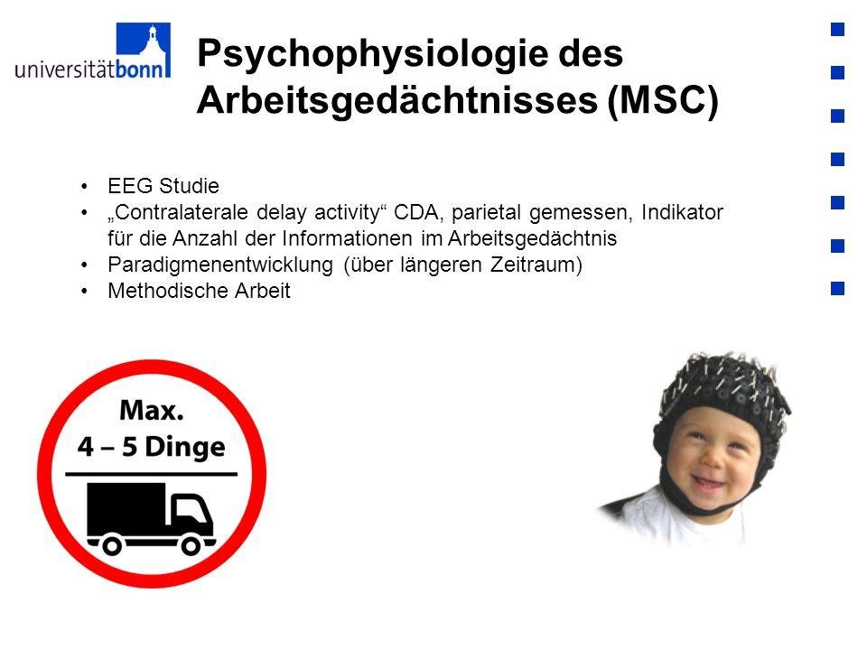 Psychophysiologie des Arbeitsgedächtnisses (MSC)