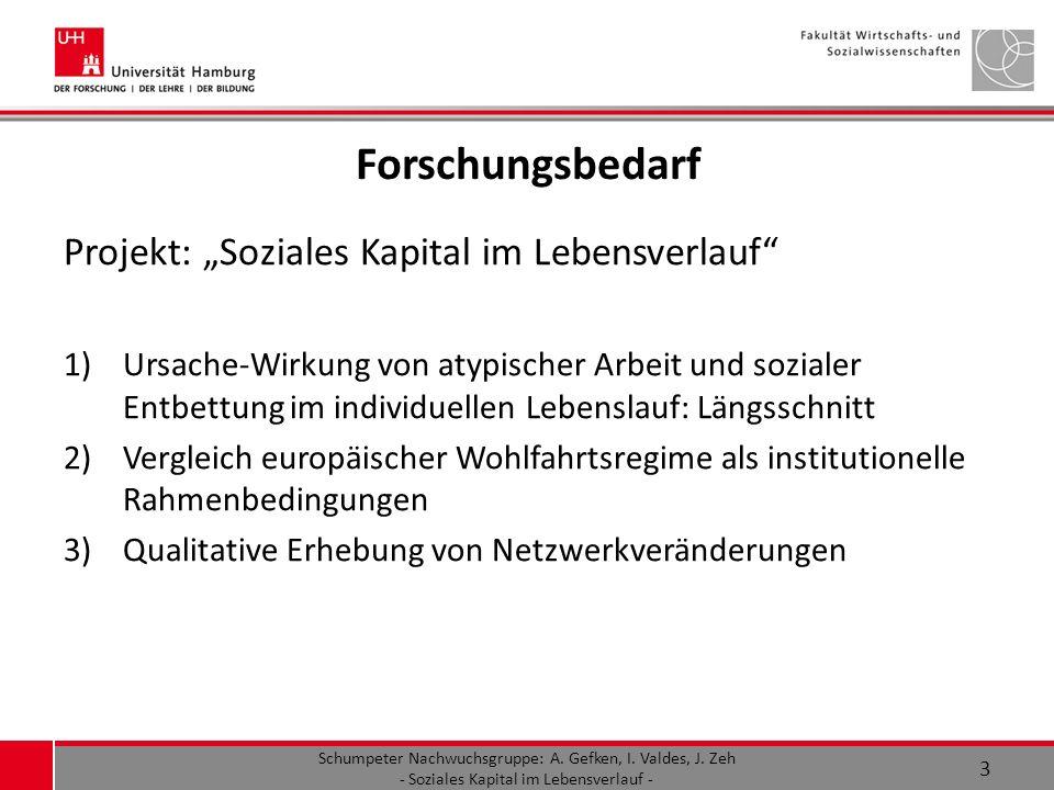 "Forschungsbedarf Projekt: ""Soziales Kapital im Lebensverlauf"