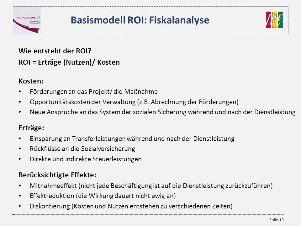 Basismodell ROI: Fiskalanalyse