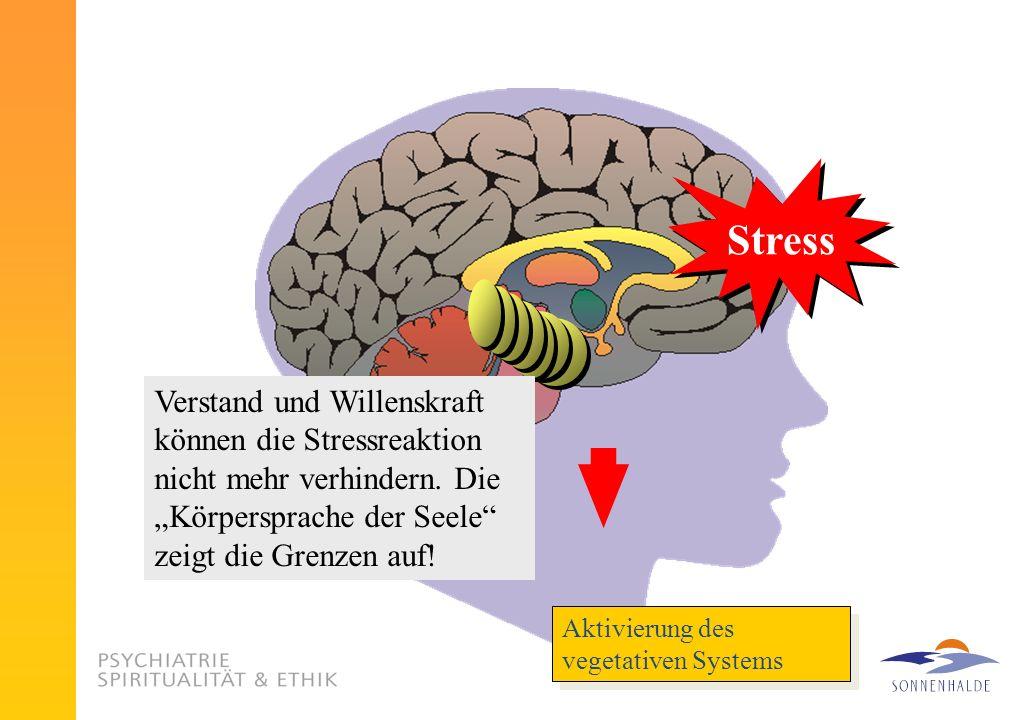 """StressVerstand und Willenskraft können die Stressreaktion nicht mehr verhindern. Die """"Körpersprache der Seele zeigt die Grenzen auf!"""