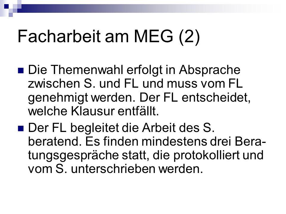 Facharbeit am MEG (2)