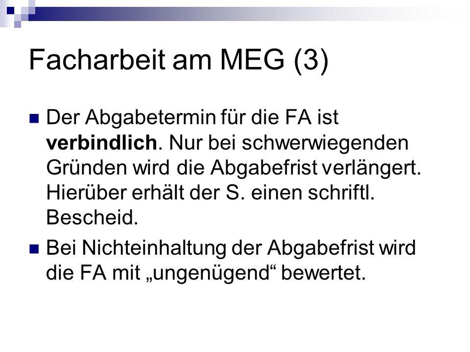Facharbeit am MEG (3)