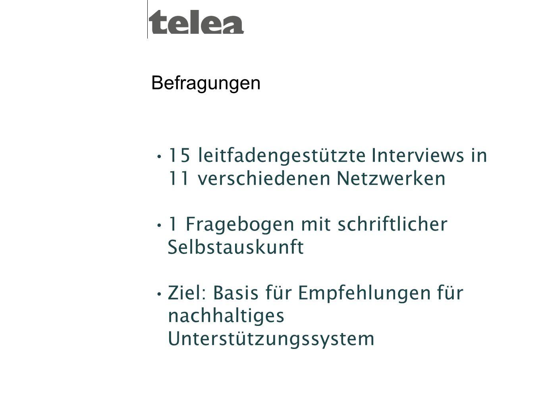 Befragungen 15 leitfadengestützte Interviews in 11 verschiedenen Netzwerken. 1 Fragebogen mit schriftlicher Selbstauskunft.