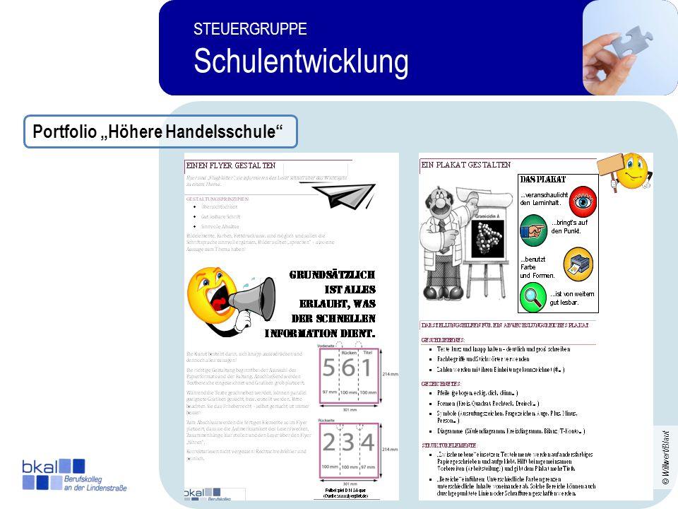 """Schulentwicklung Portfolio """"Höhere Handelsschule STEUERGRUPPE"""