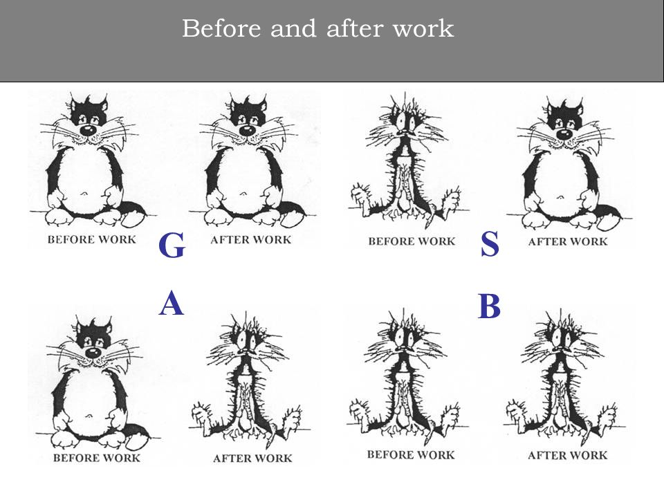 Before and after work S B G A