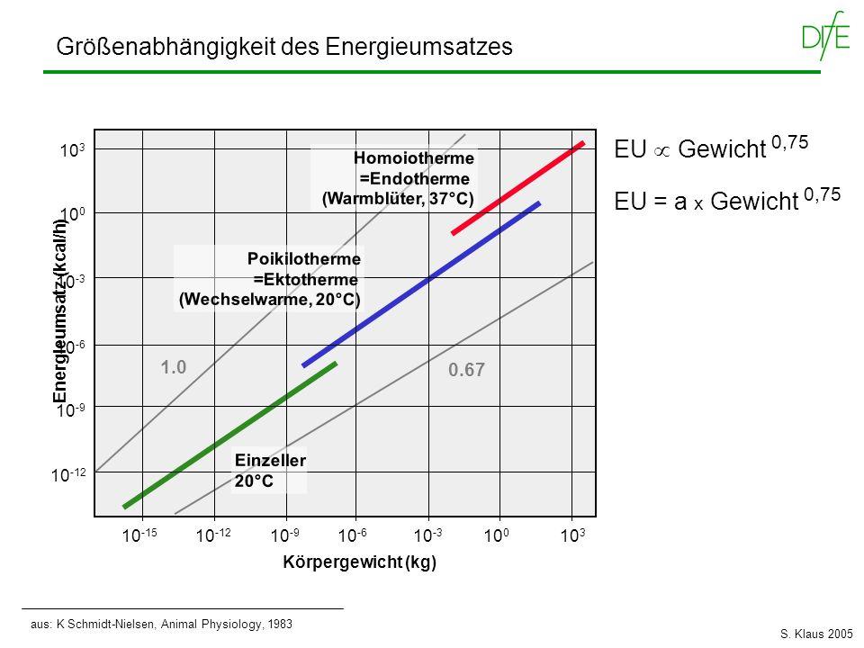 Größenabhängigkeit des Energieumsatzes