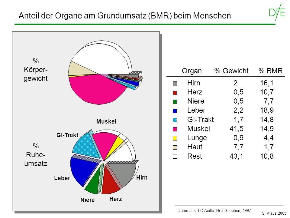 Anteil der Organe am Grundumsatz (BMR) beim Menschen