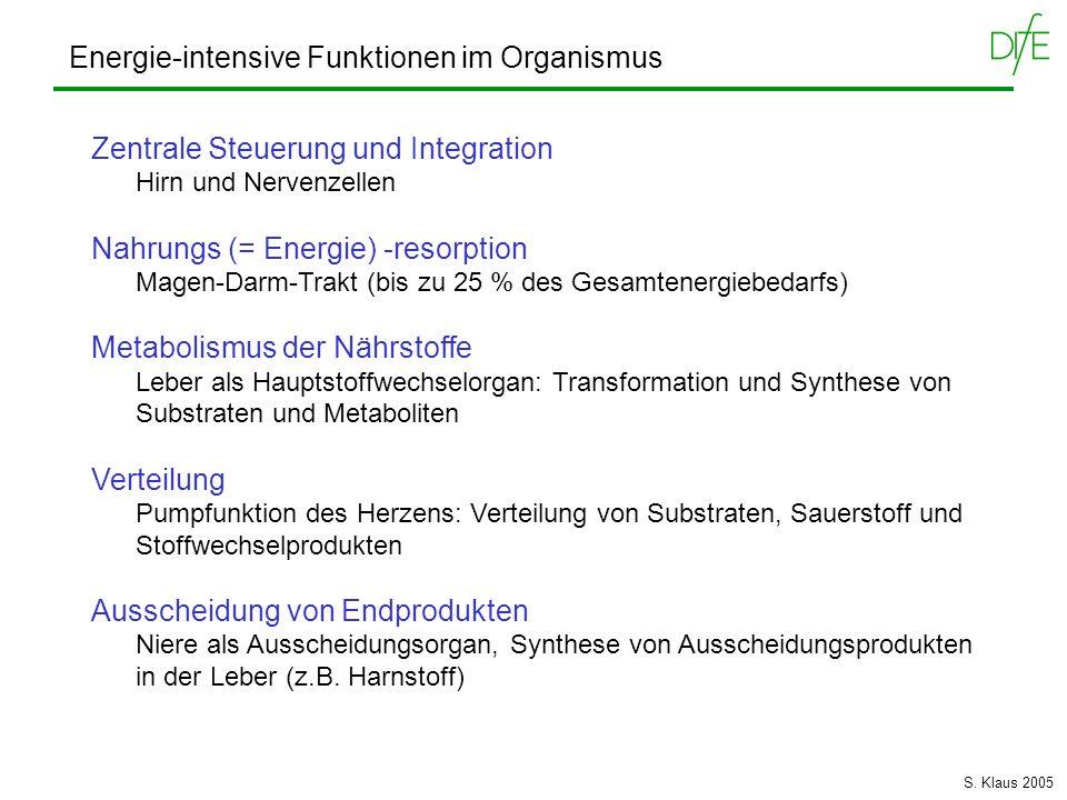 Energie-intensive Funktionen im Organismus
