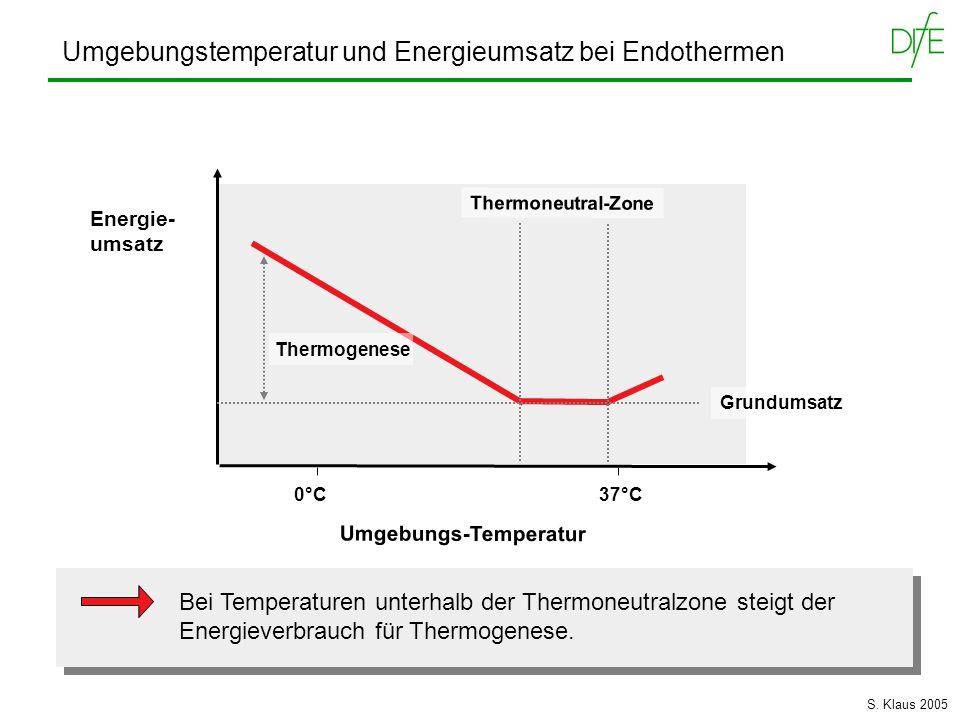 Umgebungstemperatur und Energieumsatz bei Endothermen