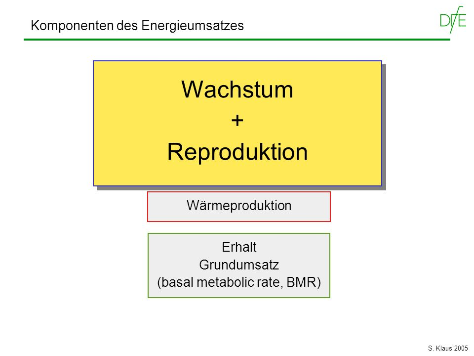 (basal metabolic rate, BMR)