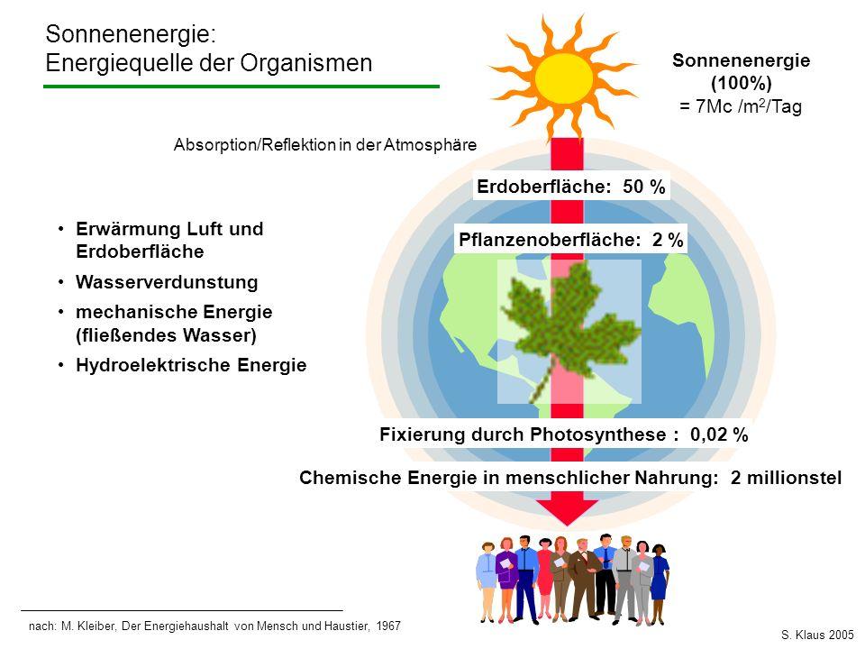Energiequelle der Organismen