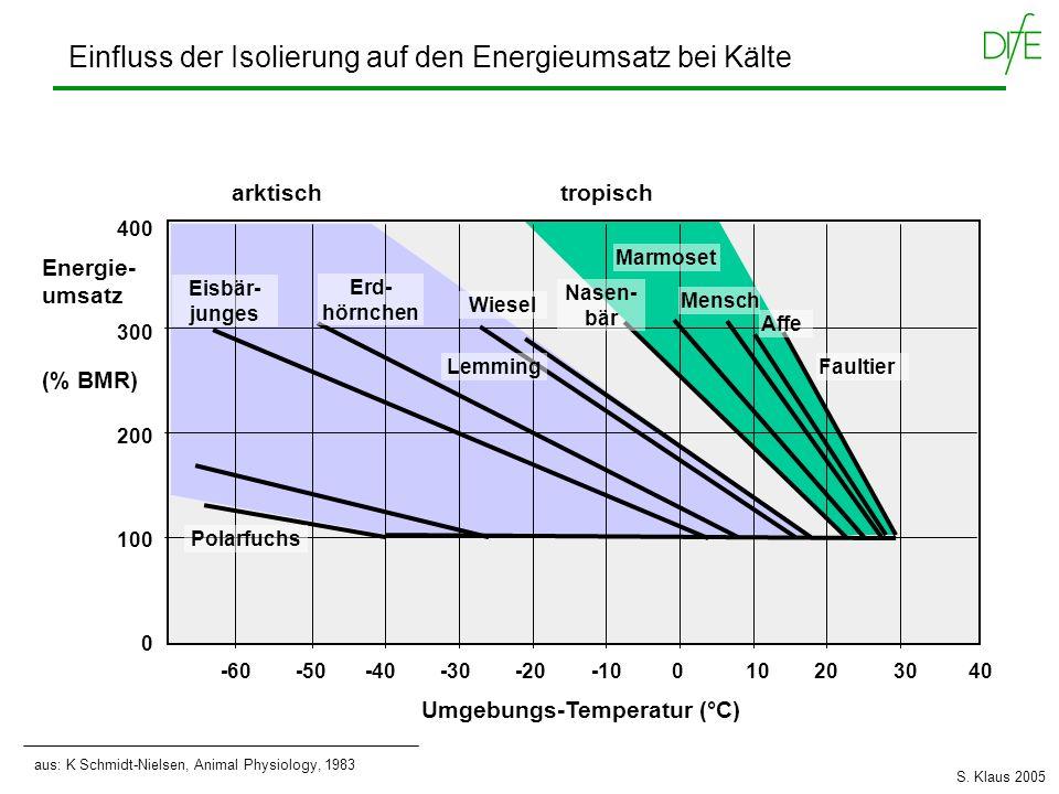 Einfluss der Isolierung auf den Energieumsatz bei Kälte