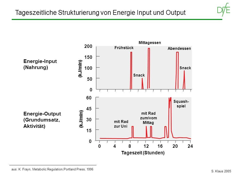 Tageszeitliche Strukturierung von Energie Input und Output