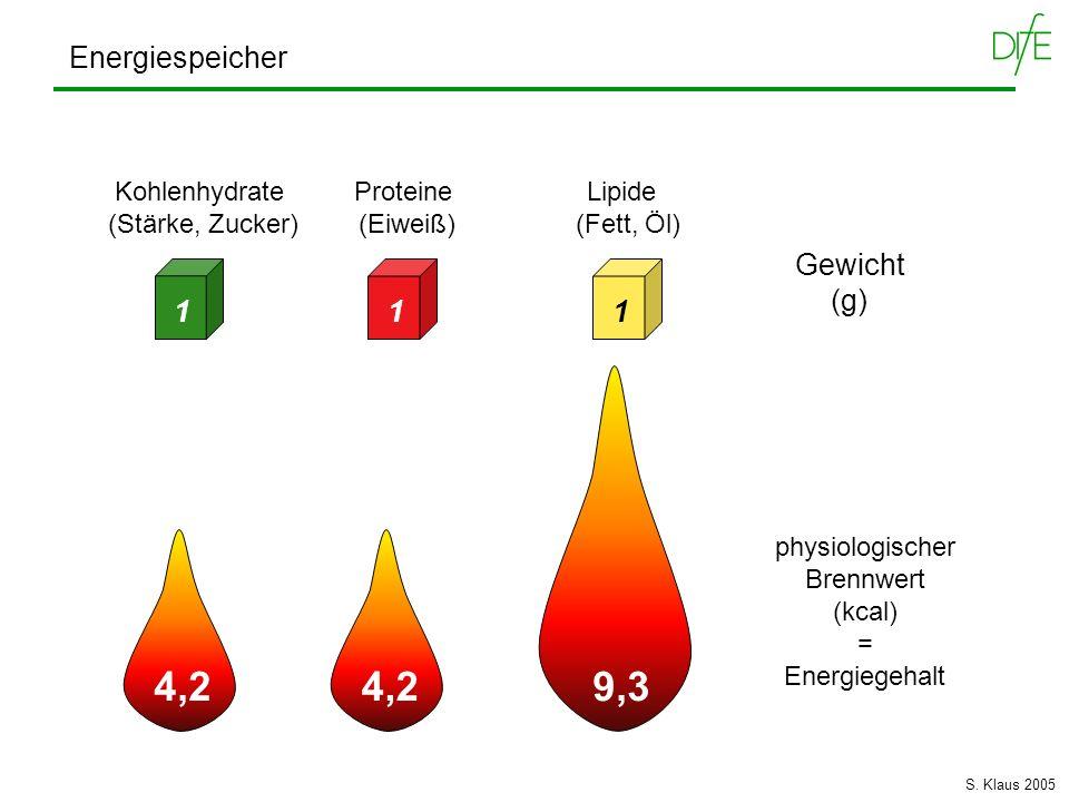 9,3 4,2 4,2 Energiespeicher Gewicht (g) 1 1 1