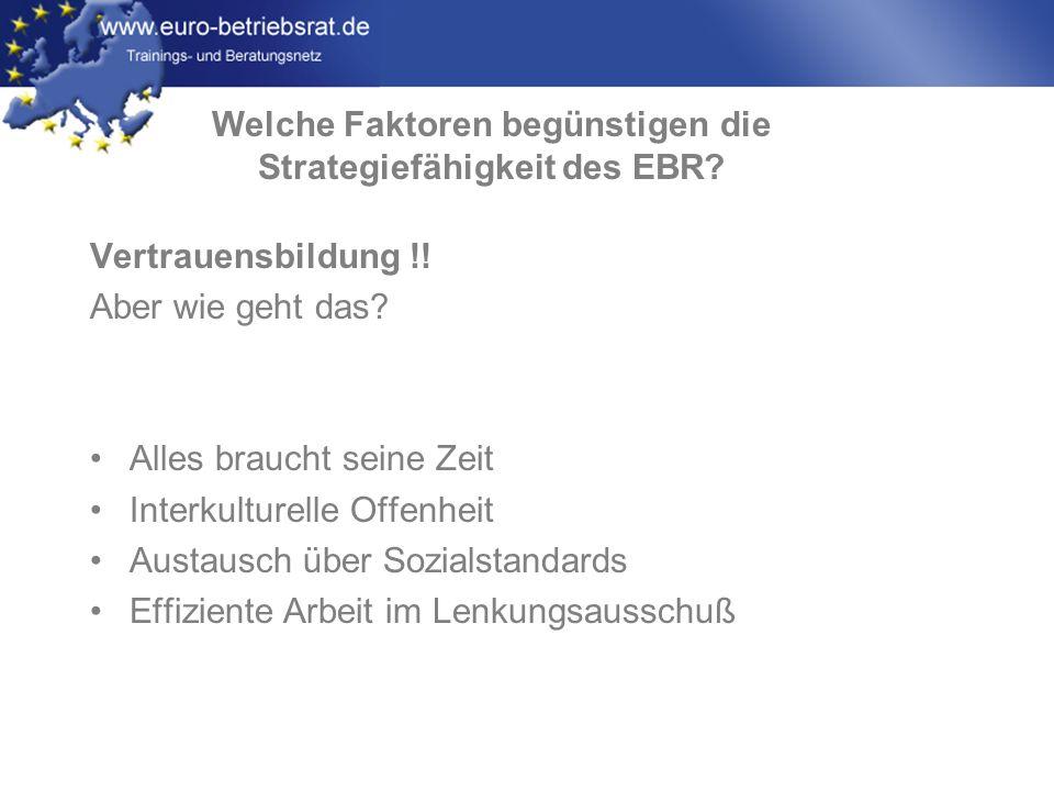 Welche Faktoren begünstigen die Strategiefähigkeit des EBR