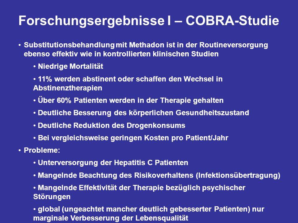 Forschungsergebnisse I – COBRA-Studie
