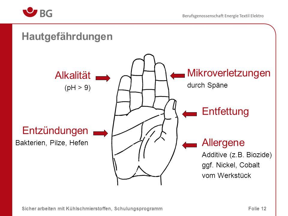 Hautgefährdungen Mikroverletzungen Alkalität Entfettung Entzündungen