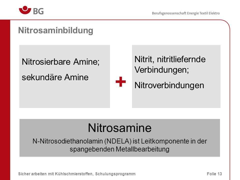 + Nitrosamine Nitrosaminbildung Nitrit, nitritliefernde Verbindungen;