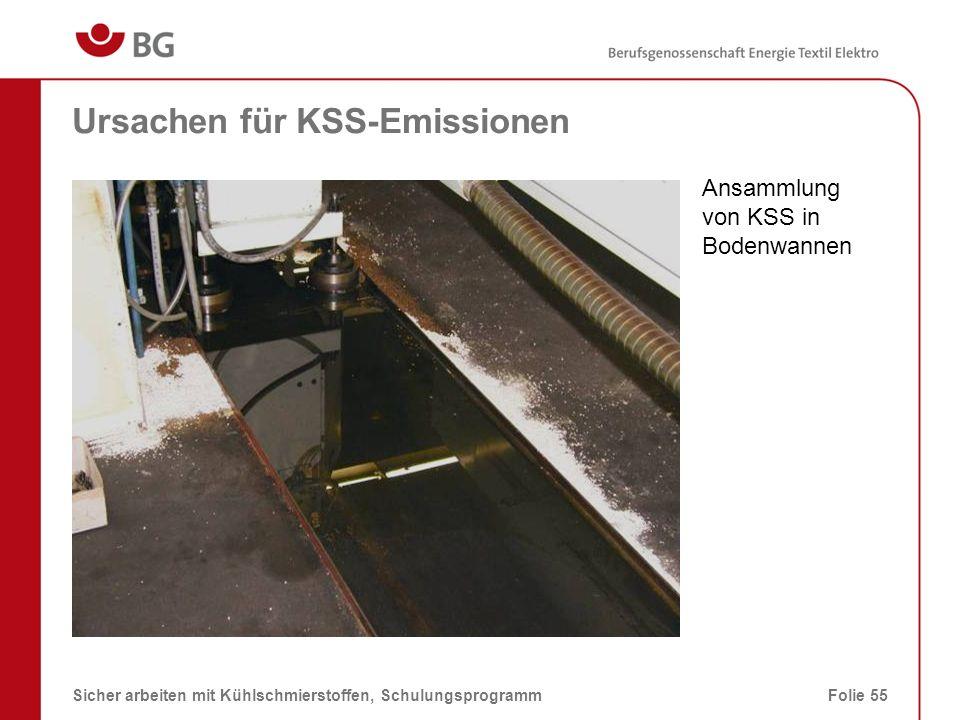 Ursachen für KSS-Emissionen