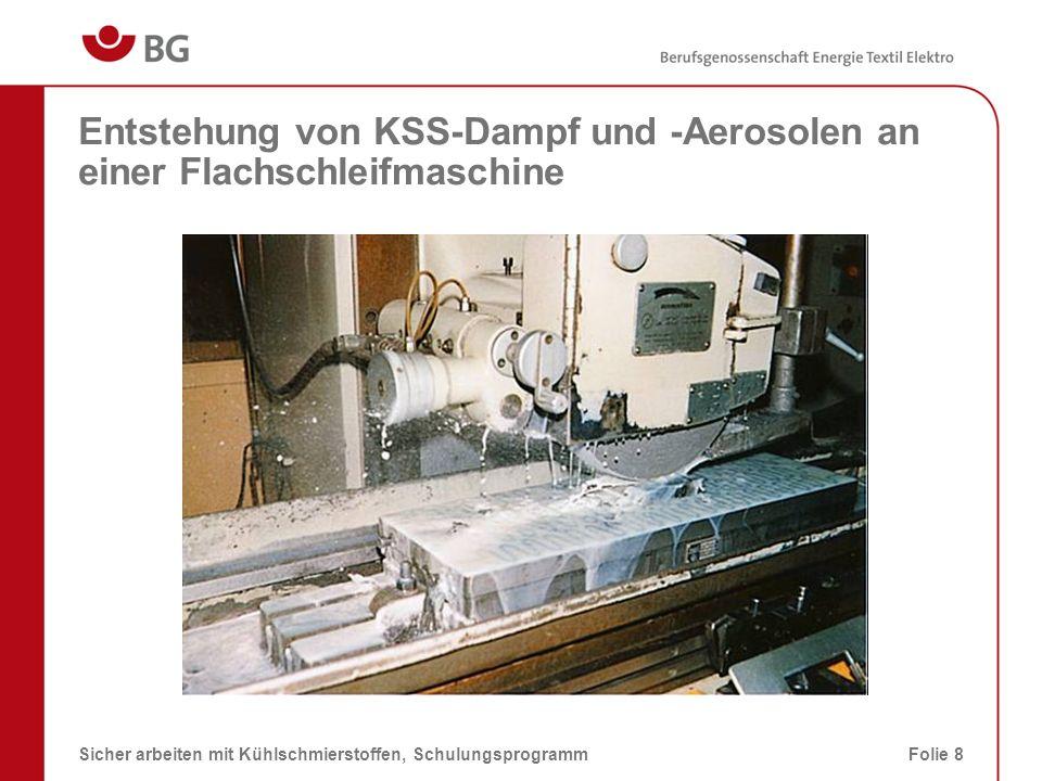 Entstehung von KSS-Dampf und -Aerosolen an einer Flachschleifmaschine
