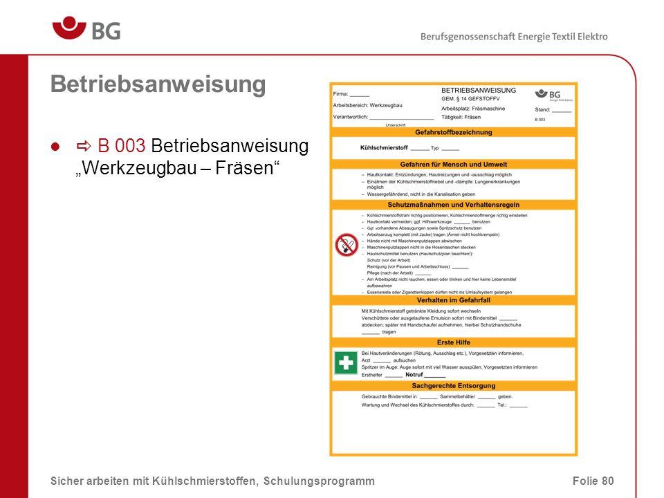 "Betriebsanweisung a B 003 Betriebsanweisung ""Werkzeugbau – Fräsen"