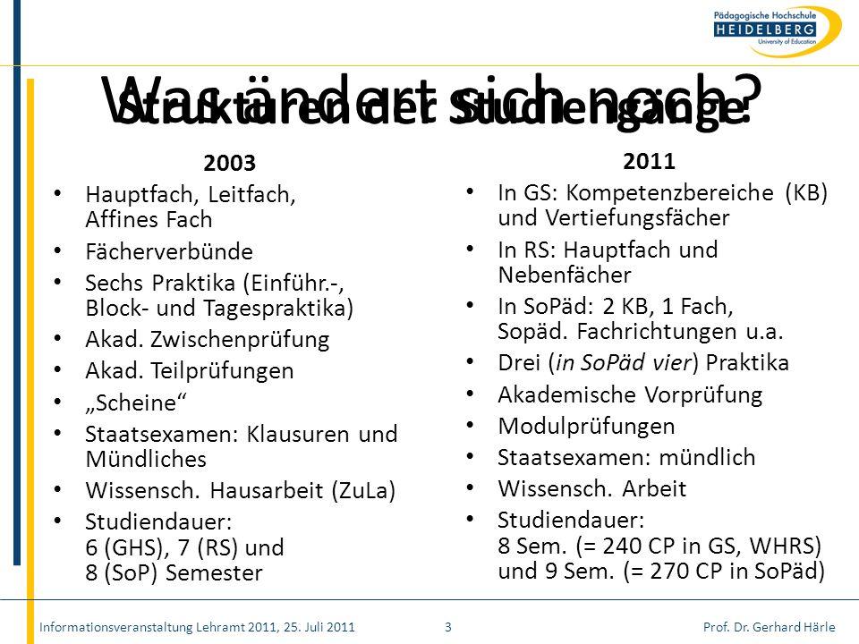 Strukturen der Studiengänge