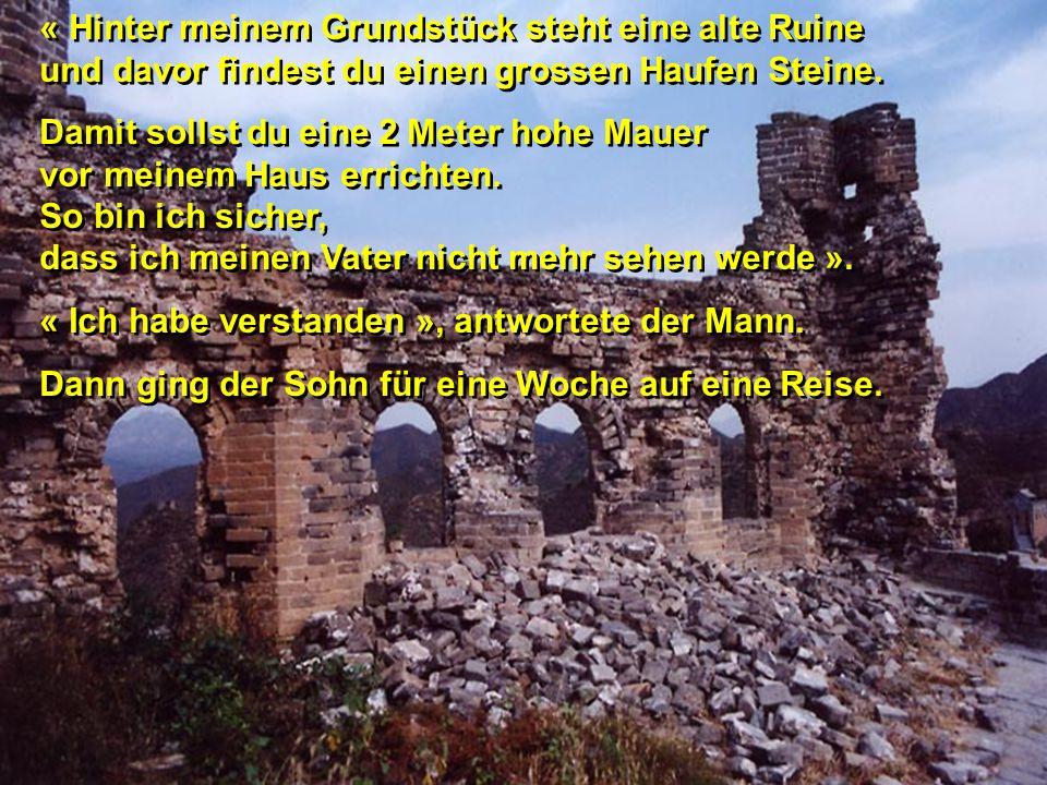 « Hinter meinem Grundstück steht eine alte Ruine und davor findest du einen grossen Haufen Steine.