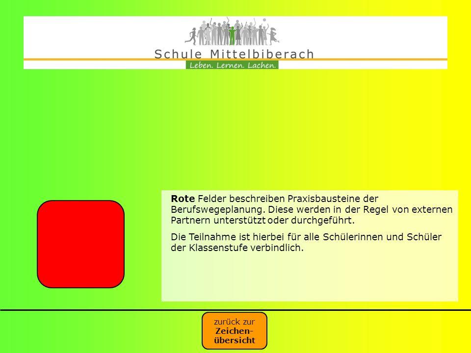 Rote Felder beschreiben Praxisbausteine der Berufswegeplanung