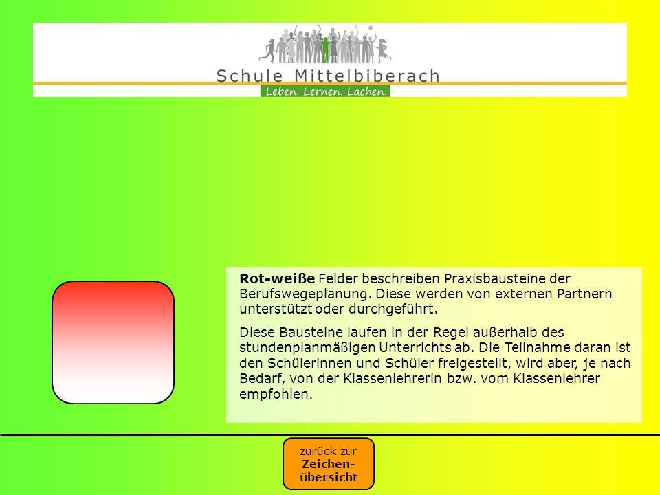 Rot-weiße Felder beschreiben Praxisbausteine der Berufswegeplanung
