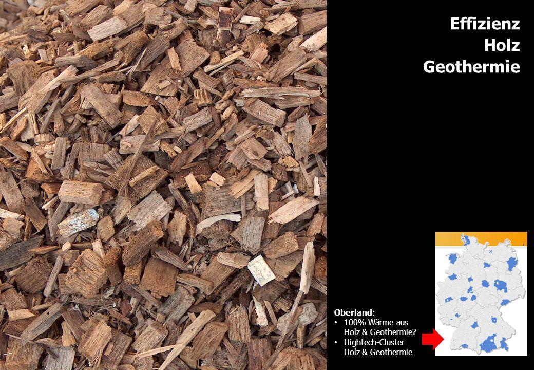 Effizienz Holz Geothermie Oberland: 100% Wärme aus Holz & Geothermie