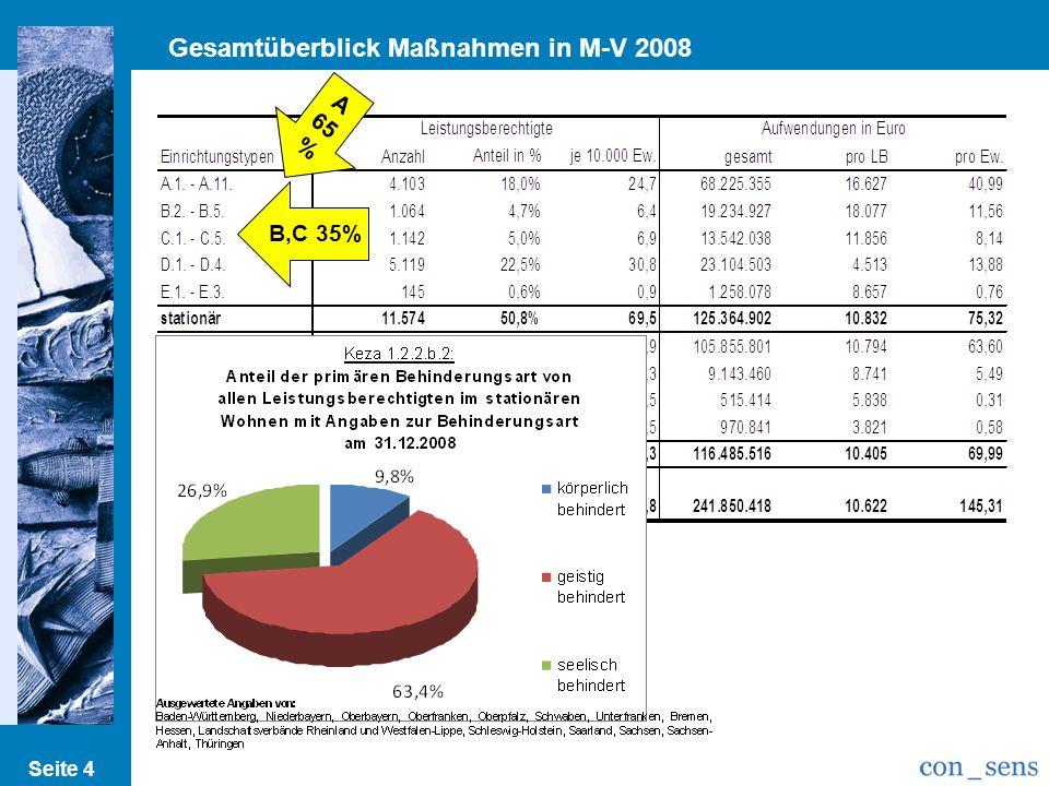 Gesamtüberblick Maßnahmen in M-V 2008
