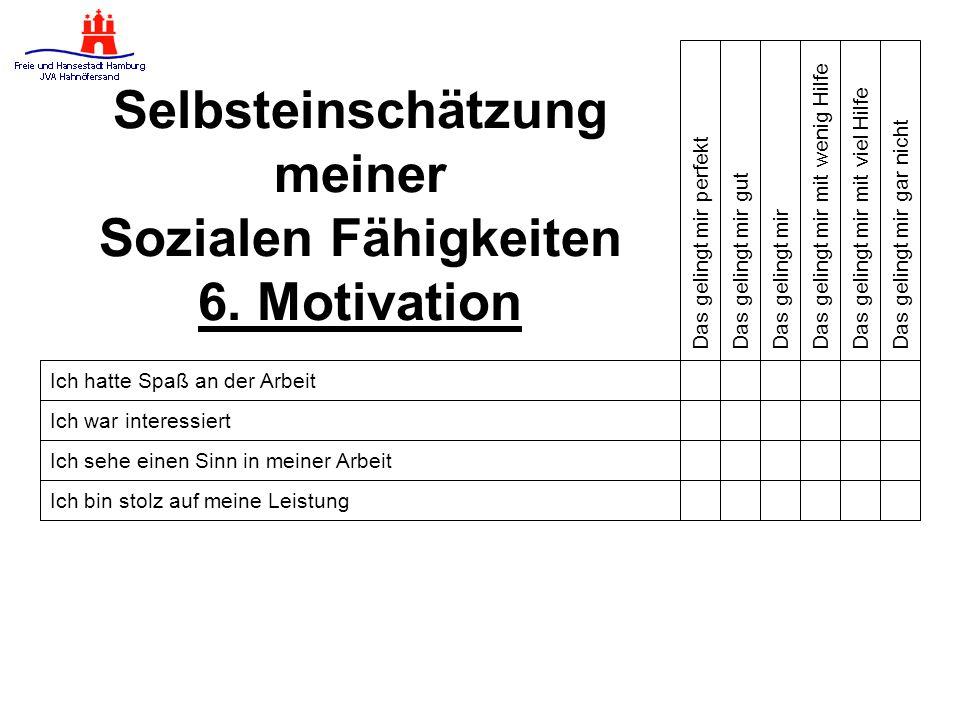 Selbsteinschätzung meiner Sozialen Fähigkeiten 6. Motivation