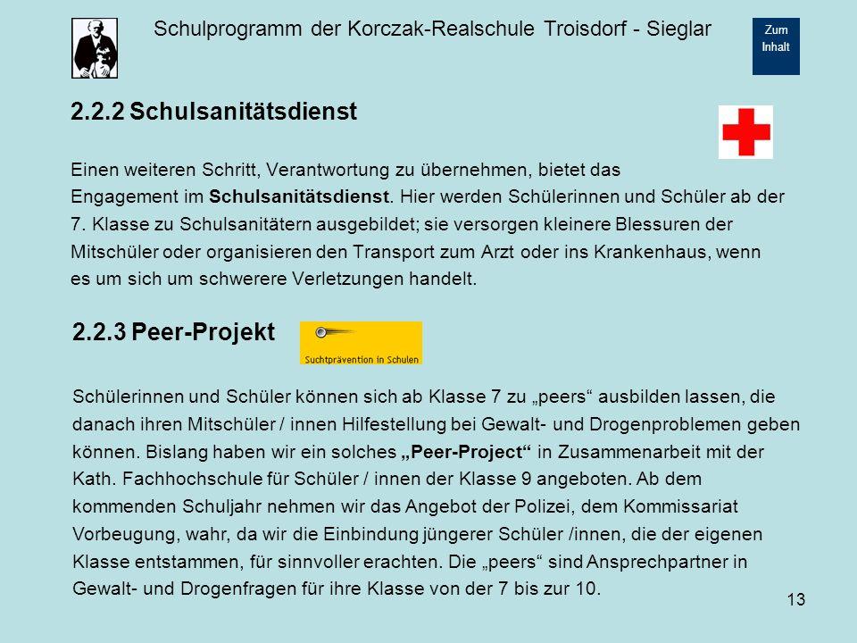 2.2.2 Schulsanitätsdienst 2.2.3 Peer-Projekt