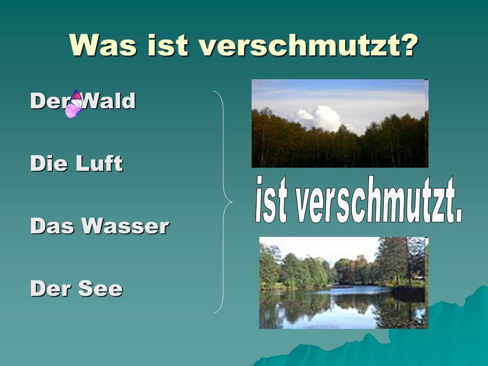 Was ist verschmutzt Der Wald Die Luft Das Wasser Der See