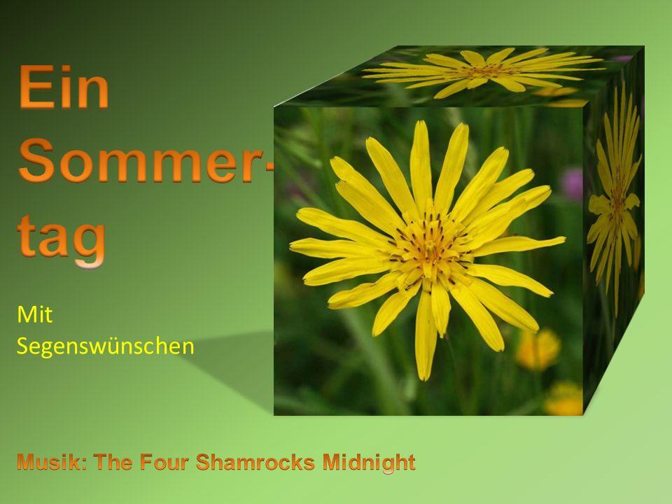 Ein Sommer- tag Mit Segenswünschen Musik: The Four Shamrocks Midnight
