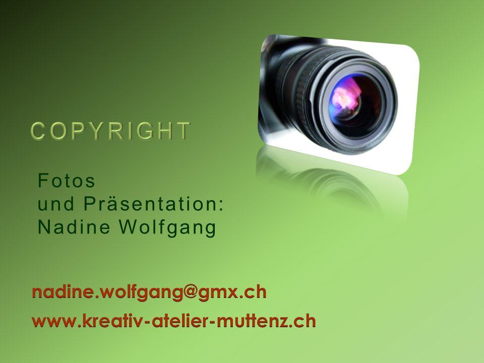 Fotos und Präsentation: Nadine Wolfgang