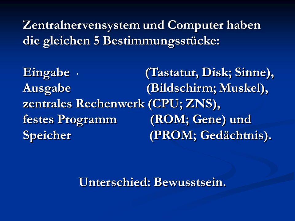 Zentralnervensystem und Computer haben die gleichen 5 Bestimmungsstücke: