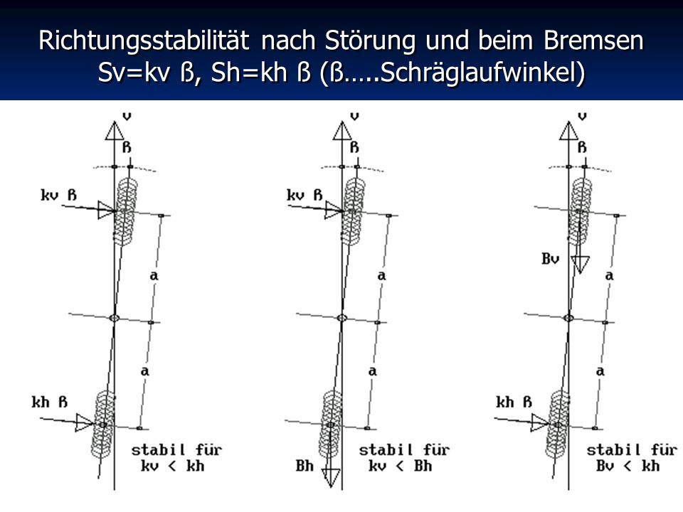 Richtungsstabilität nach Störung und beim Bremsen Sv=kv ß, Sh=kh ß (ß…