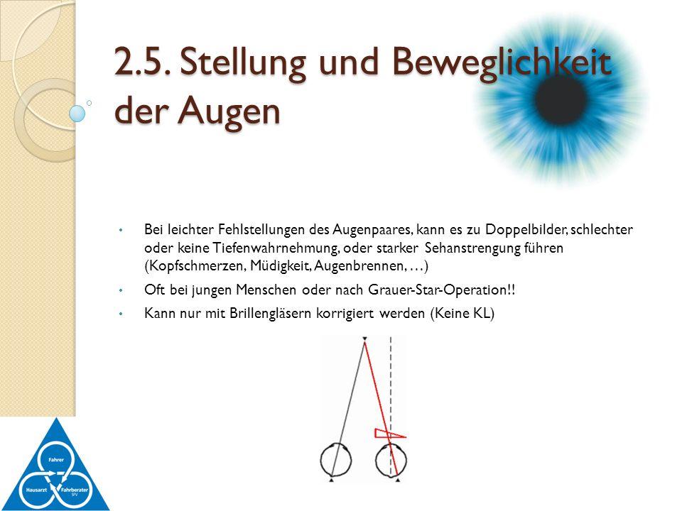 2.5. Stellung und Beweglichkeit der Augen