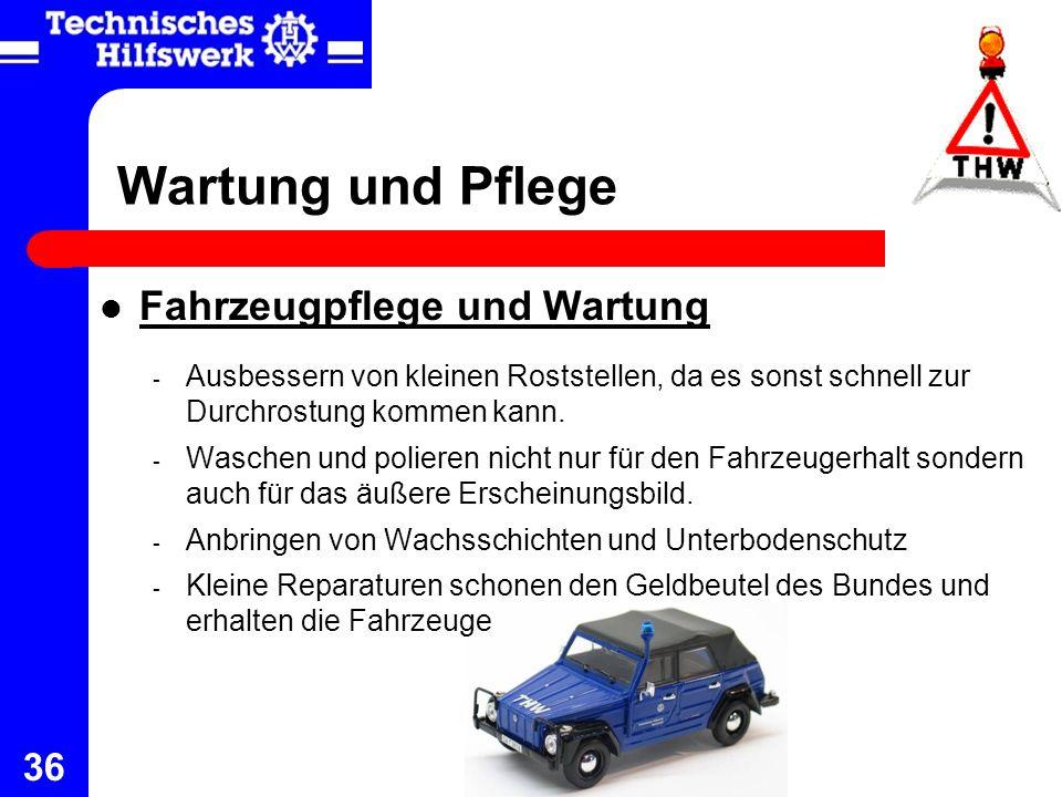 Wartung und Pflege Fahrzeugpflege und Wartung